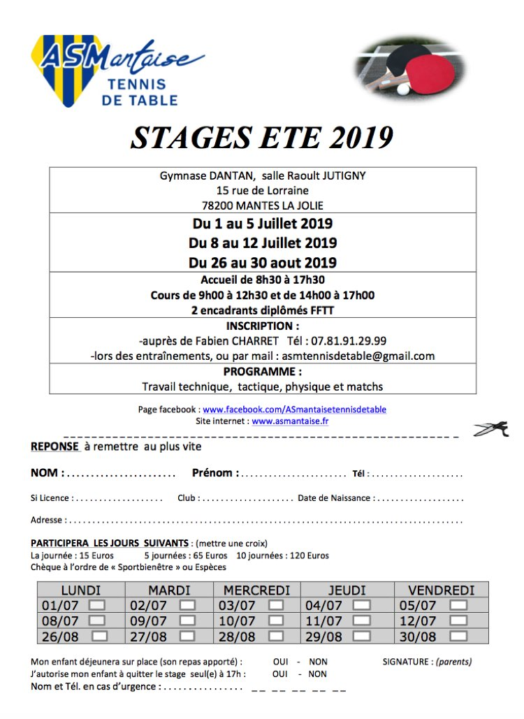 Stages Tennis de Table PingPong Mantes la Jolie Ete 2019